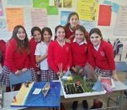 pueblos-originarios-blog-2012-4